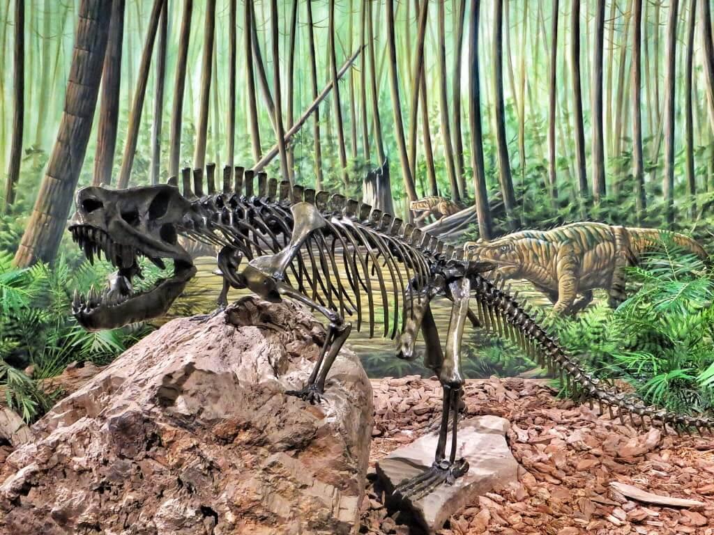 Dinosaurusmuseossa oli paljon pronssiluurankoja.